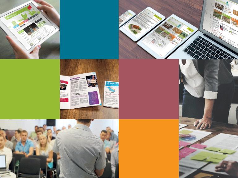 La couleur du Zèbre - Agence de communication