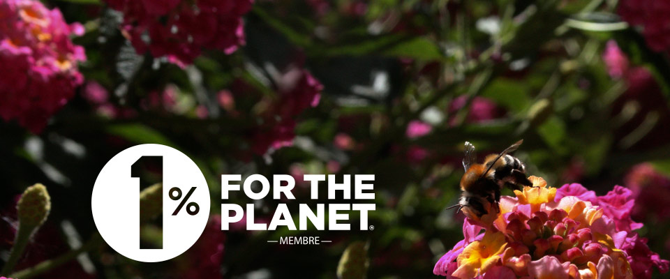 La couleur du Zèbre s'engage avec 1% for the Planet